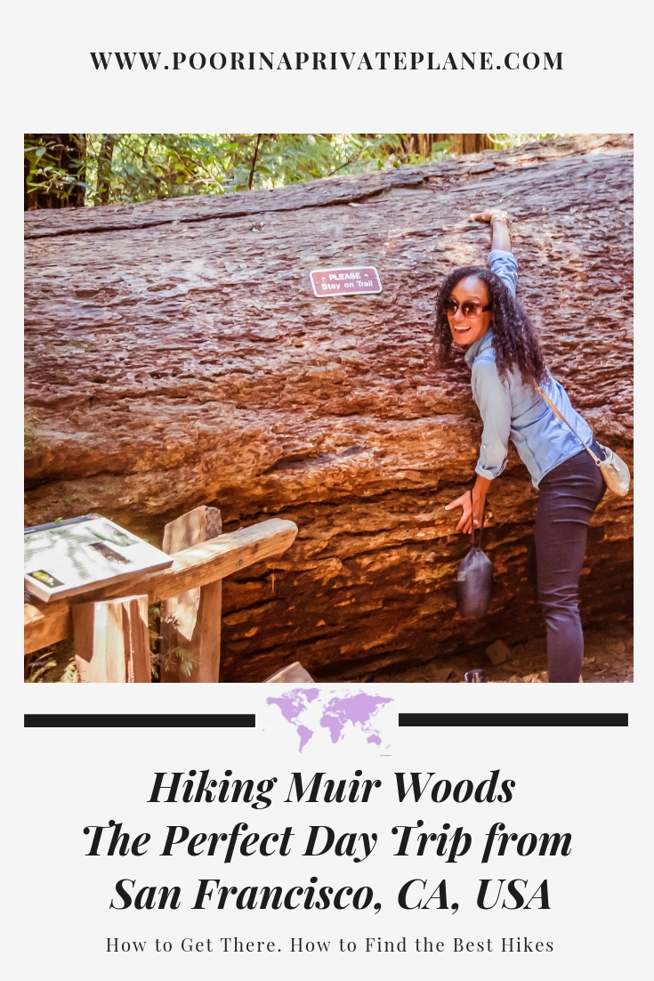 The Ultimate Guide to a Day Trip to Muir Woods. Muir woods is a great day trip from San Francisco. With so many hiking trails to choose from there is something for everyone. This national park where you can see the amazing red woods should not be missed.