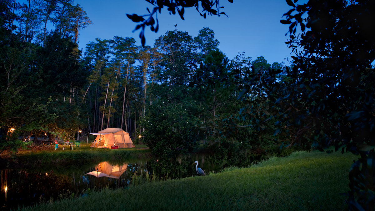 The Campsites at Disney's Fort Wilderness Resort Campground