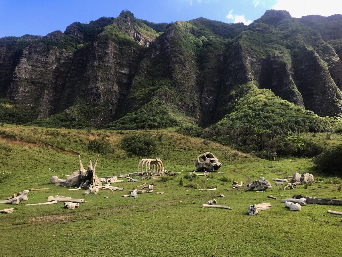 Jurassic Valley Oahu - Free to Travel Mama