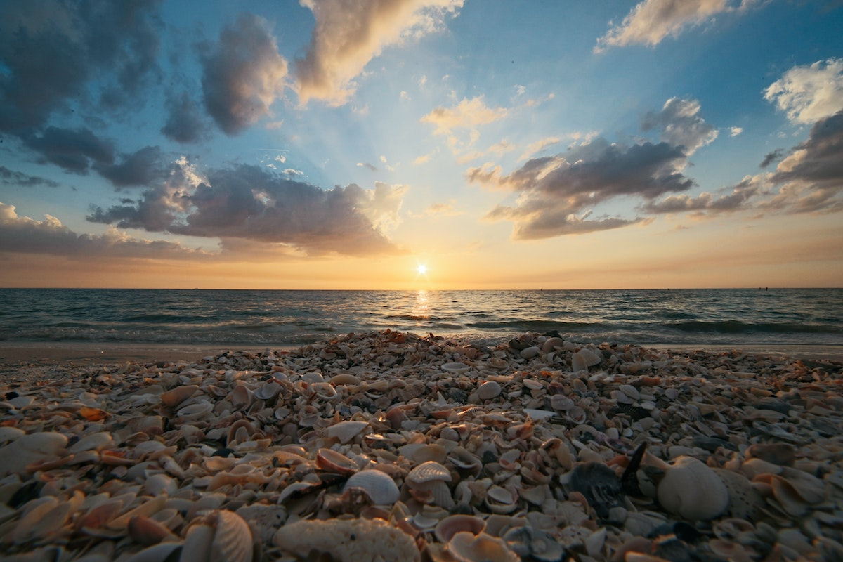 Best Shelling beaches in Florida
